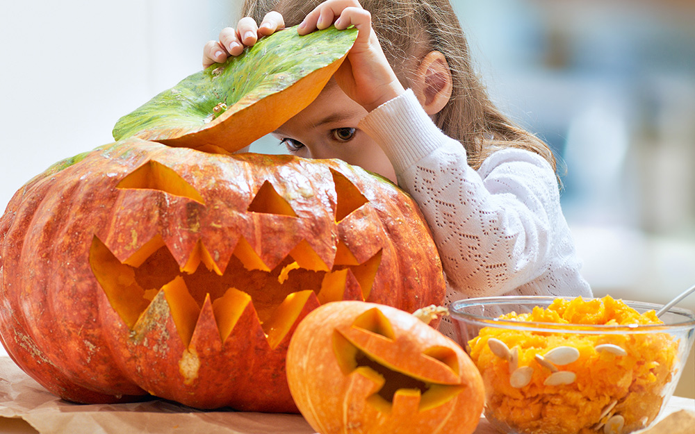 A little girl lifts the lid off of a carved pumpkin.