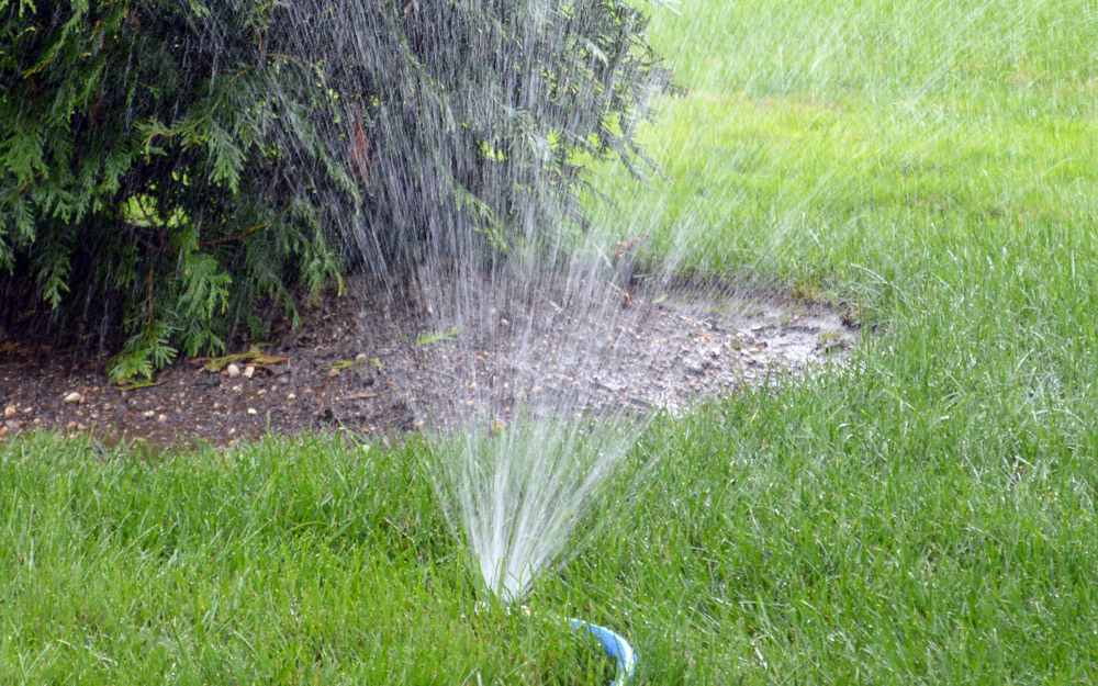 sprinkler watering a brown patch of lawn