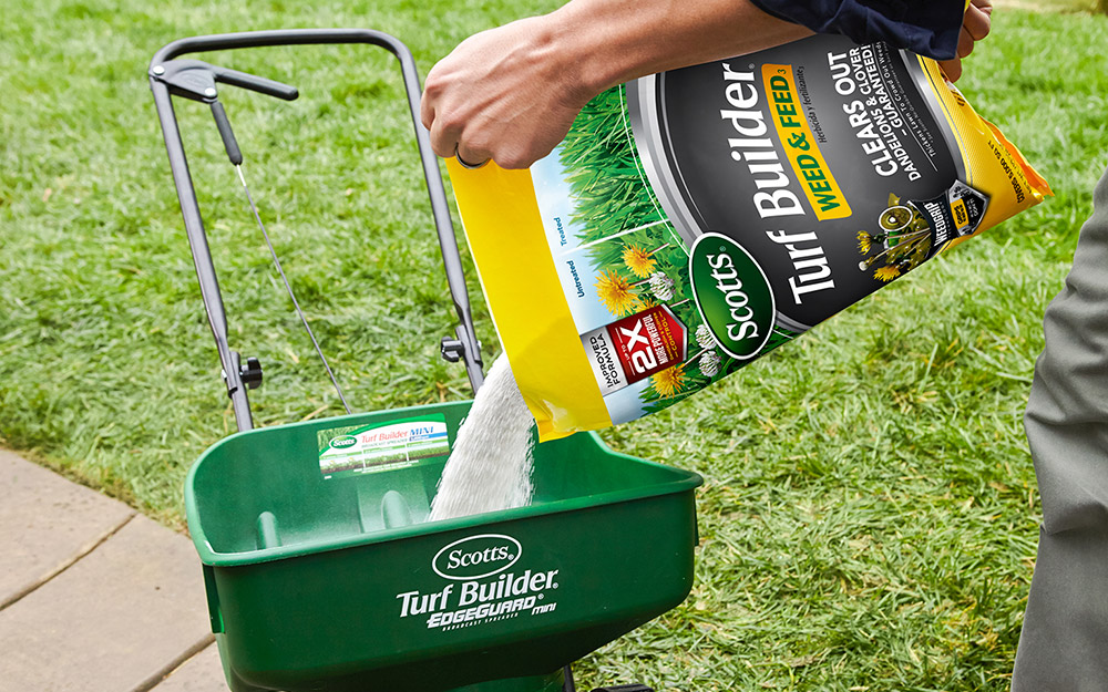 Weed and Feed Fertilizers