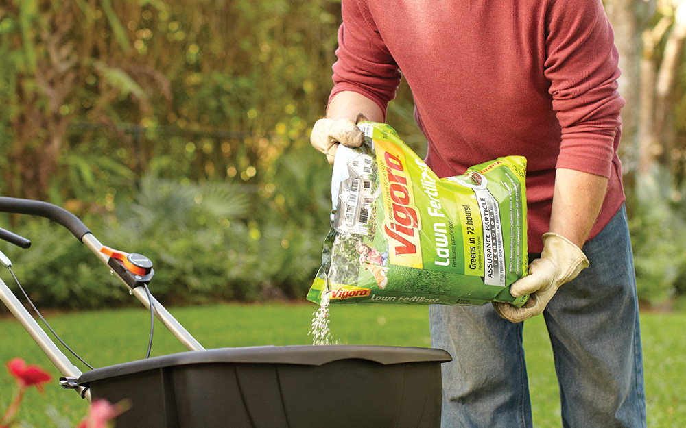 Feed Only Fertilizers
