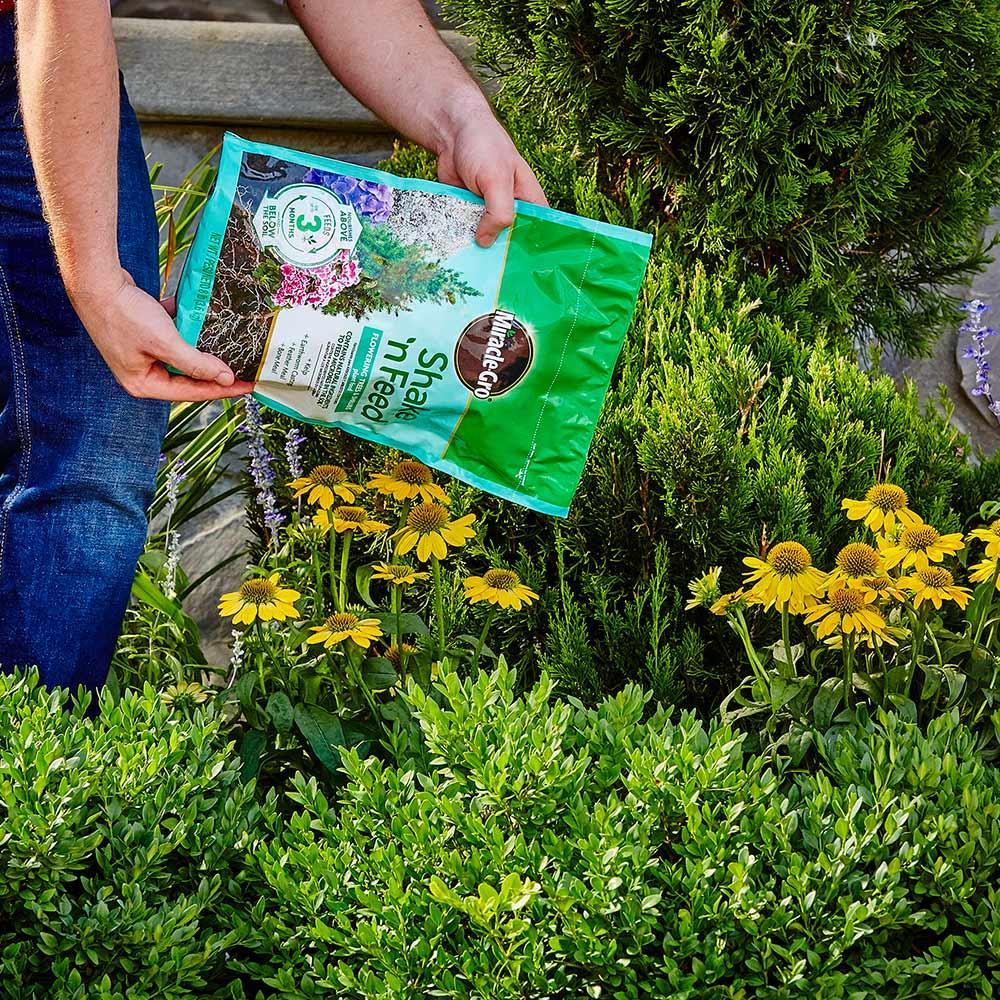 PLANT FERTILIZERS - ALL-PURPOSE PLANT FERTILIZERS