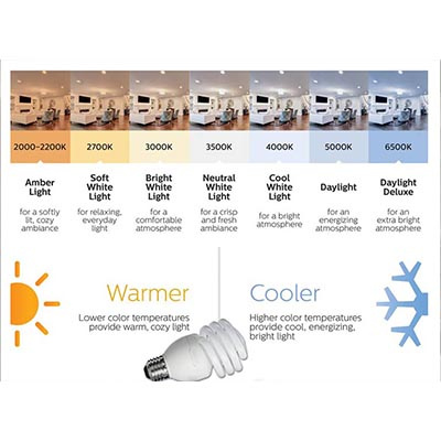 CFL Bulbs Buying Guide