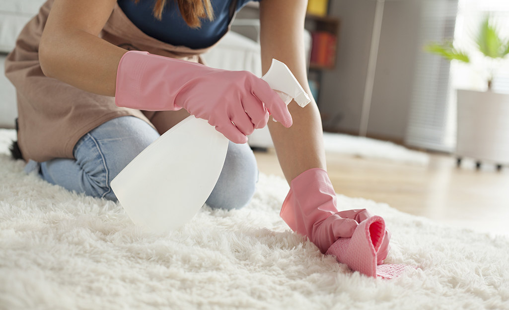 A person spot cleaning a shag rug.