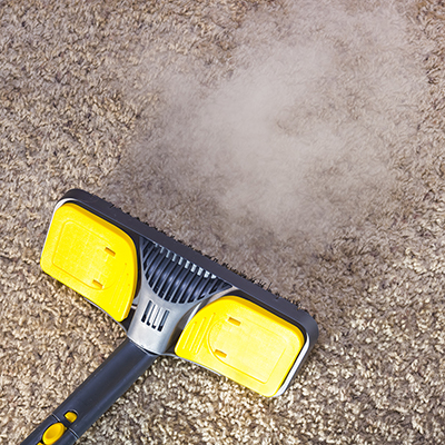 A steam cleaner is used to clean carpet.