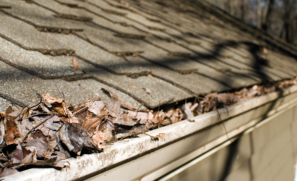 Gutters filled with leaves.