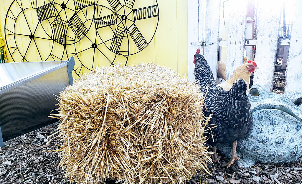 Use Straw Bales