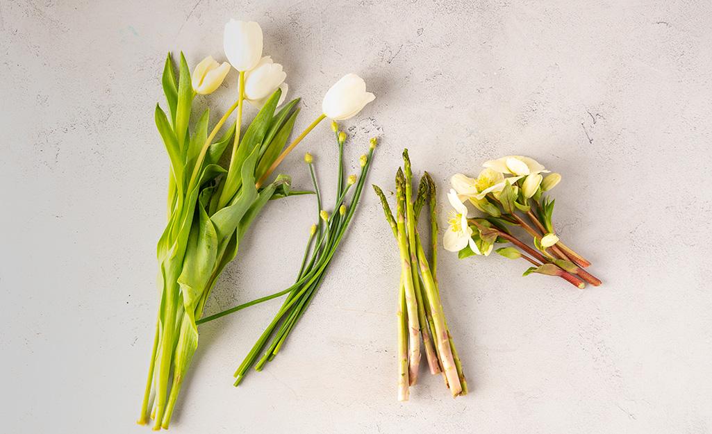 Hoa tulip, hẹ, măng tây và hellebore đặt trên bàn.