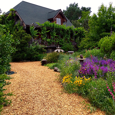 How to Create a Sustainable Garden in a Large Space