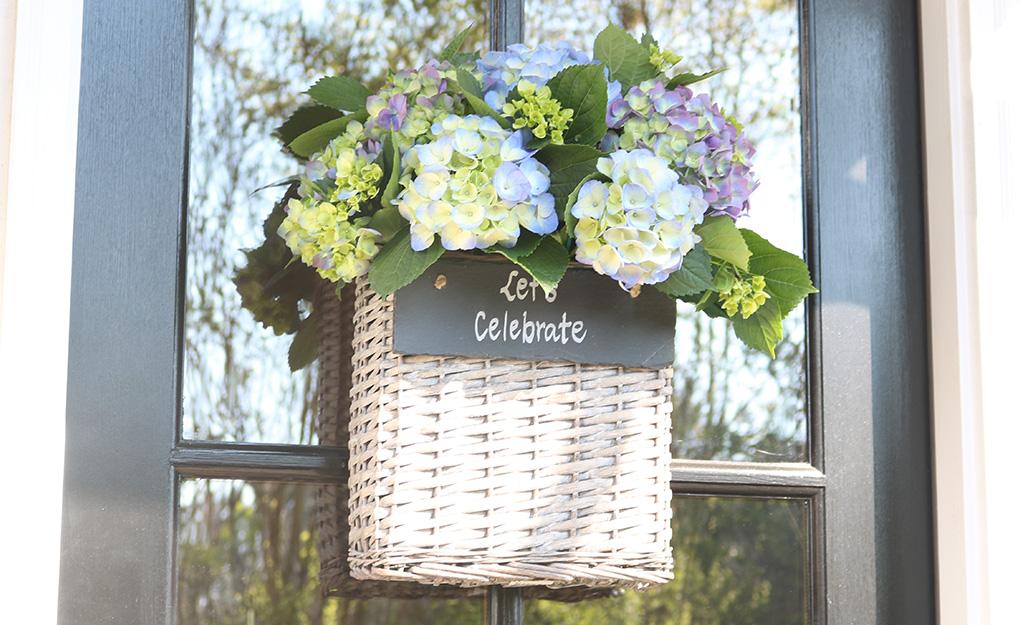 Choose Blue Flowers