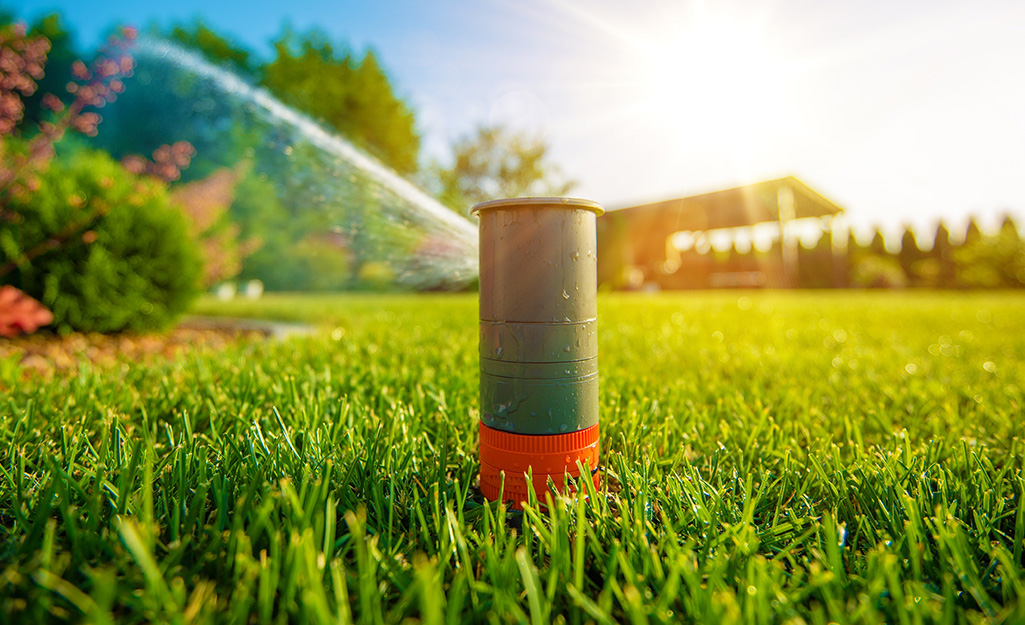 A sprinkler head spraying water over a lawn.