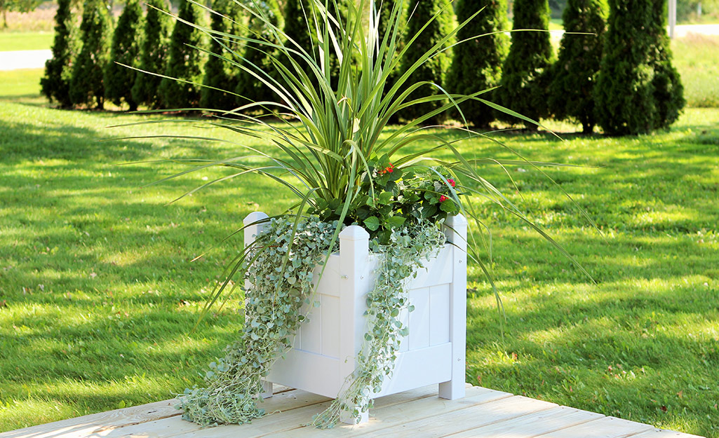 Plant Pot Toppers