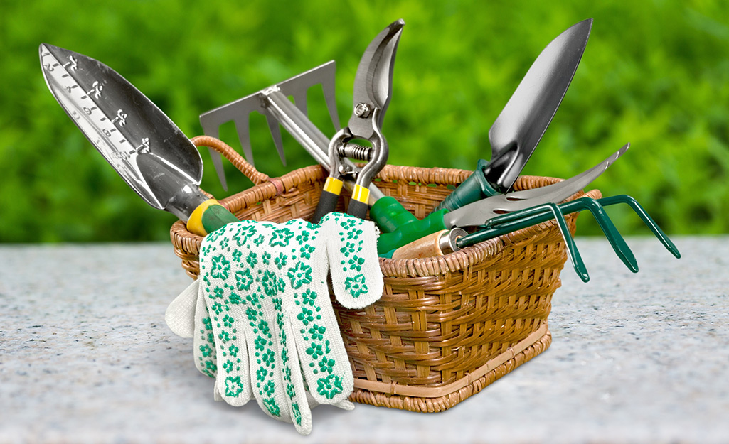 Clean, Sharpen and Replenish Garden Tools