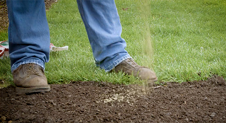 Someone sprinkling grass seeds over a patch of topsoil.