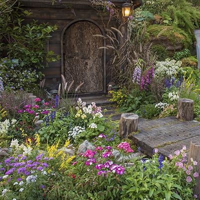An abundant flower garden growing around a rustic shed.