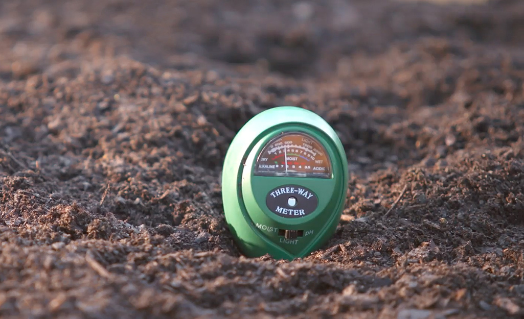 Soil is tested with a pH kit.