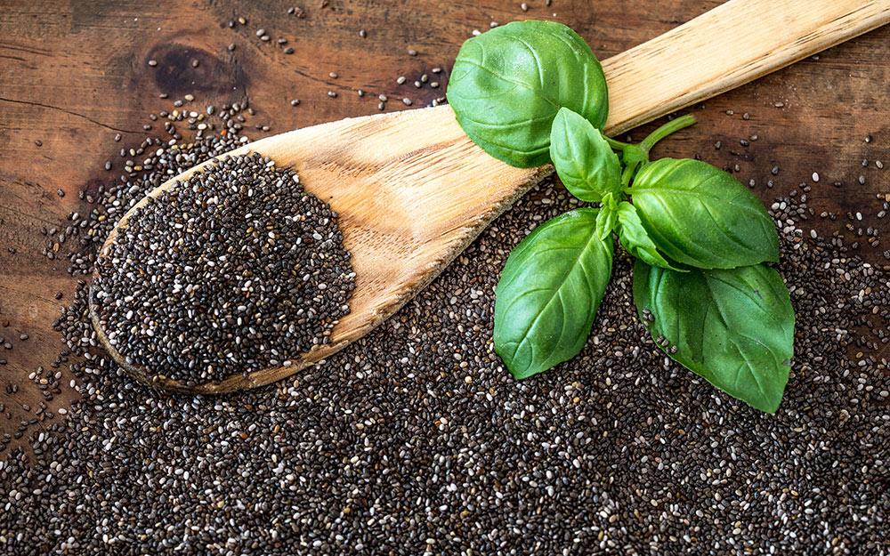 Growing basil in soil