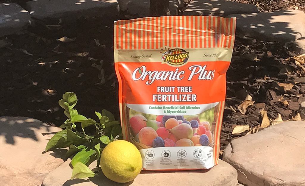 A bag of organic fruit tree fertilizer sitting outside under a tree with a lemon and some leaves beside it.