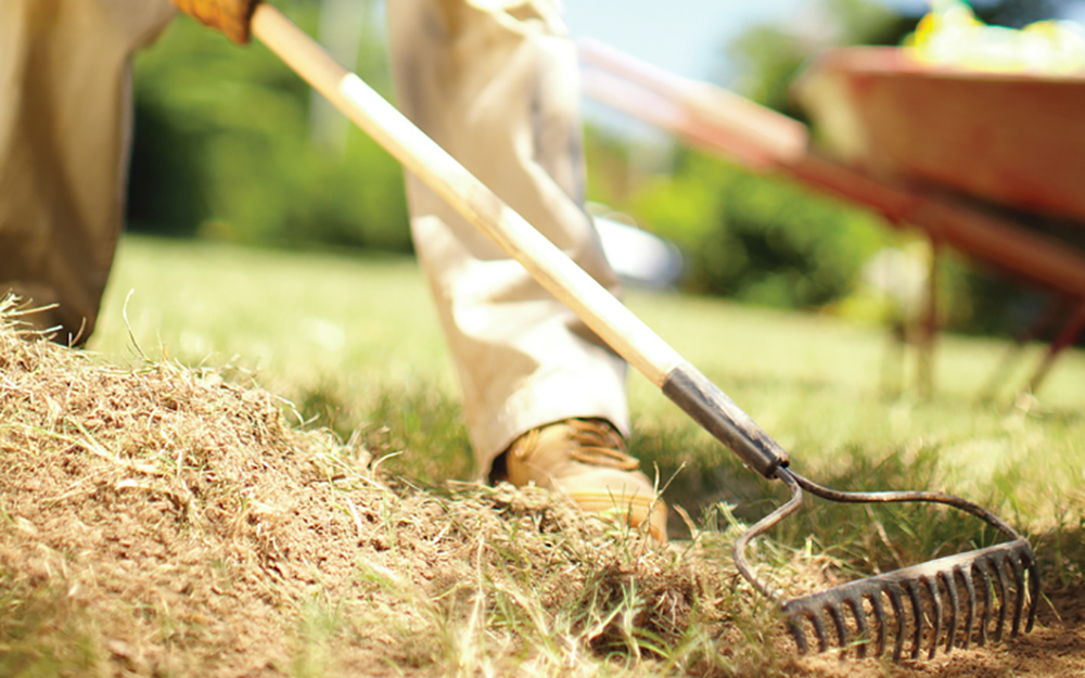 person using rake on lawn to prepare soil for seeding