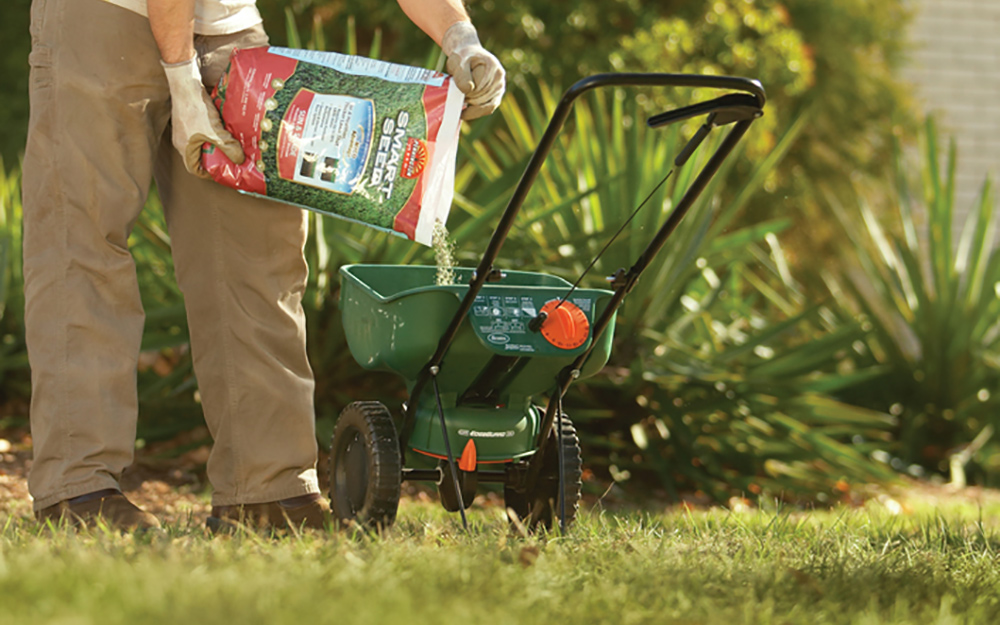 A Person Pouring Grass Seed Into Lawn Spreader.