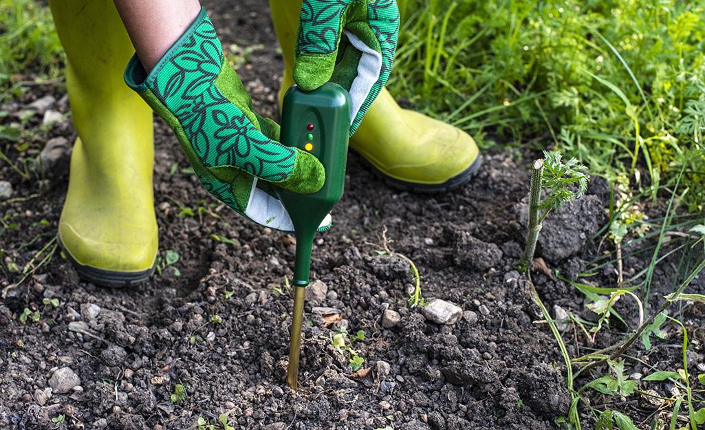 Gardener testing soil