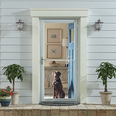 A dog looking through a storm door.