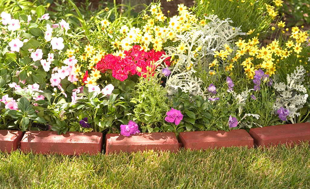 A flower bed with brick edging.