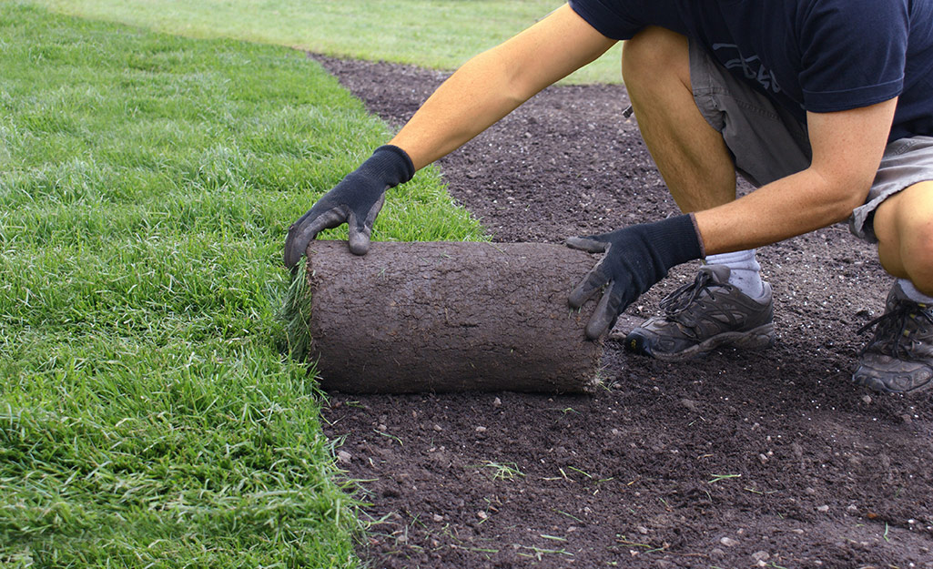 How To Lay Sod Guide - The Home Depot