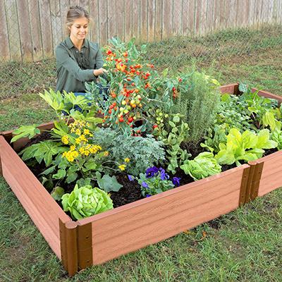 Gardener tends vegetables in raised garden bed