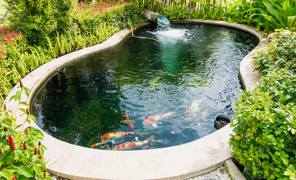 How To Make A Fish Pond The Home Depot