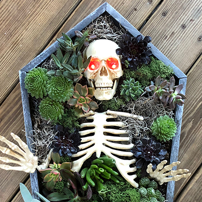 How to Make a Halloween Coffin Centerpiece