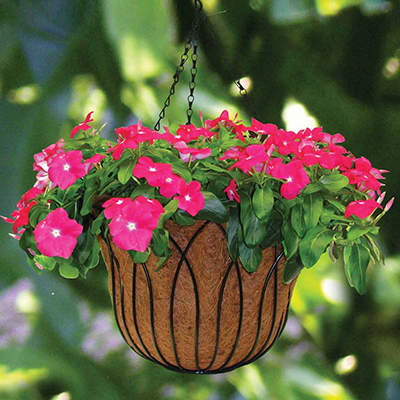 How to create hanging flower baskets