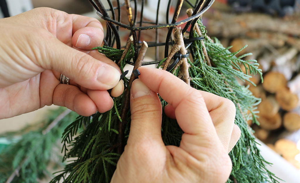 Someone using tied to attach fresh evergreens to a dressform.