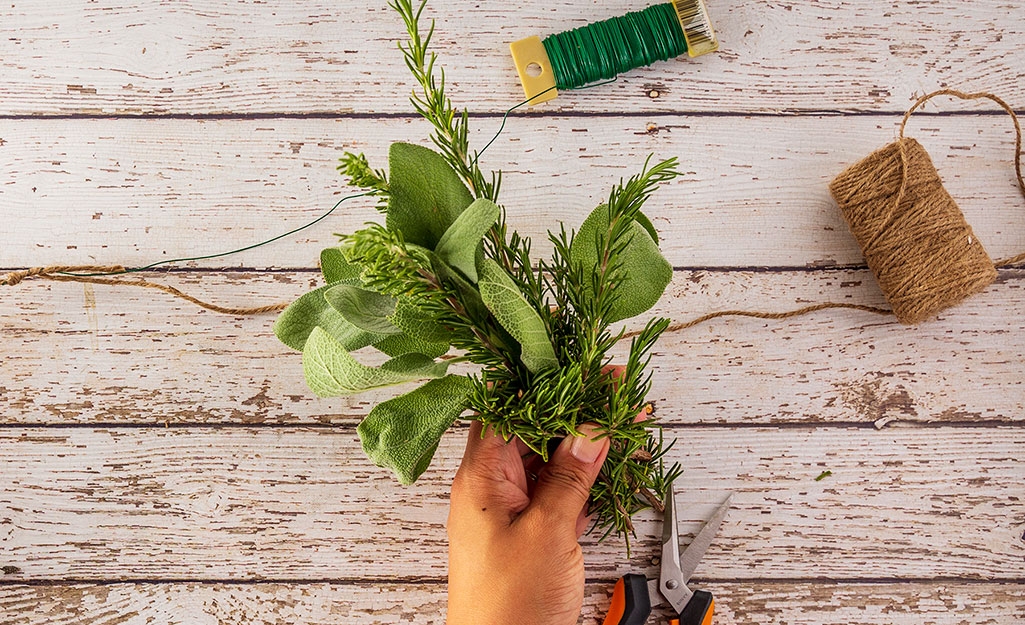 Person bundles together the herbs.