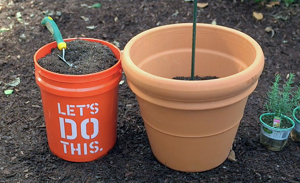 Homer bucket with soil for terra cotta container