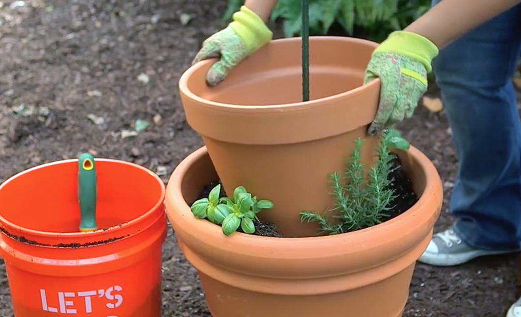 Gardener adds second terra cotta container