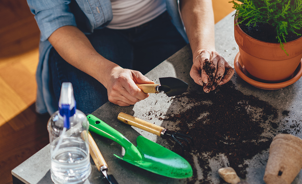 Someone using trowels, a spray bottle of water and other small gardening tools to plant herbs for an indoor herb garden.