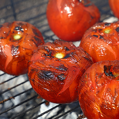 Fresh tomatoes charred on a charcoal gill