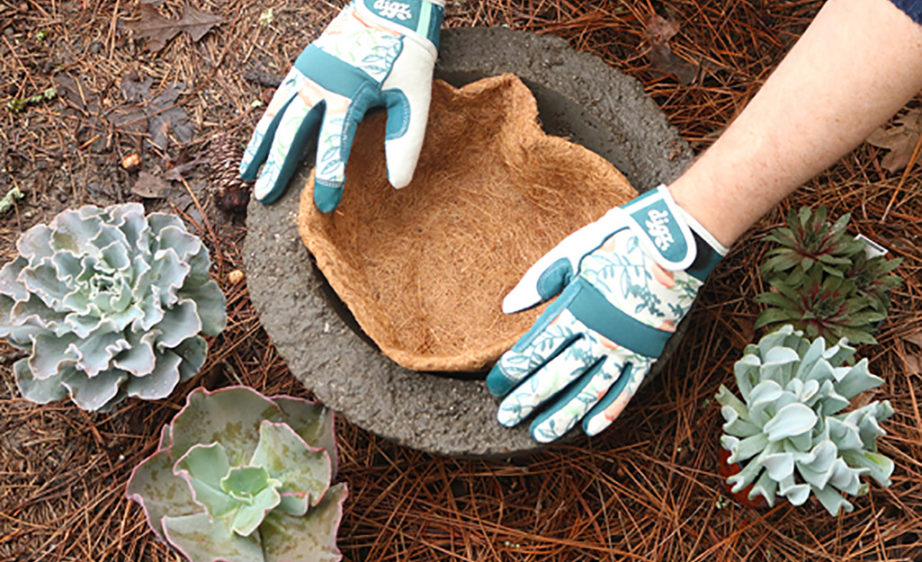 A gardener places a coco liner in a rustic hypertufa planter.