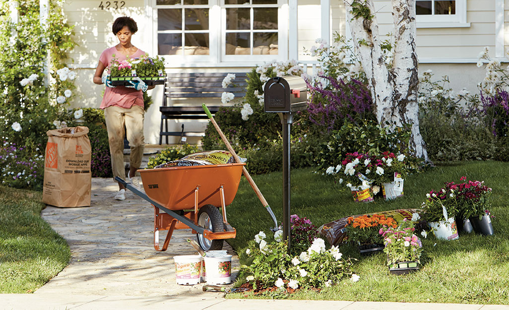 Woman carrying flowers to plant in a mulch garden bed.