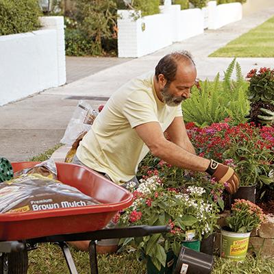 Man gardening with mulch in a red wheelbarrow.