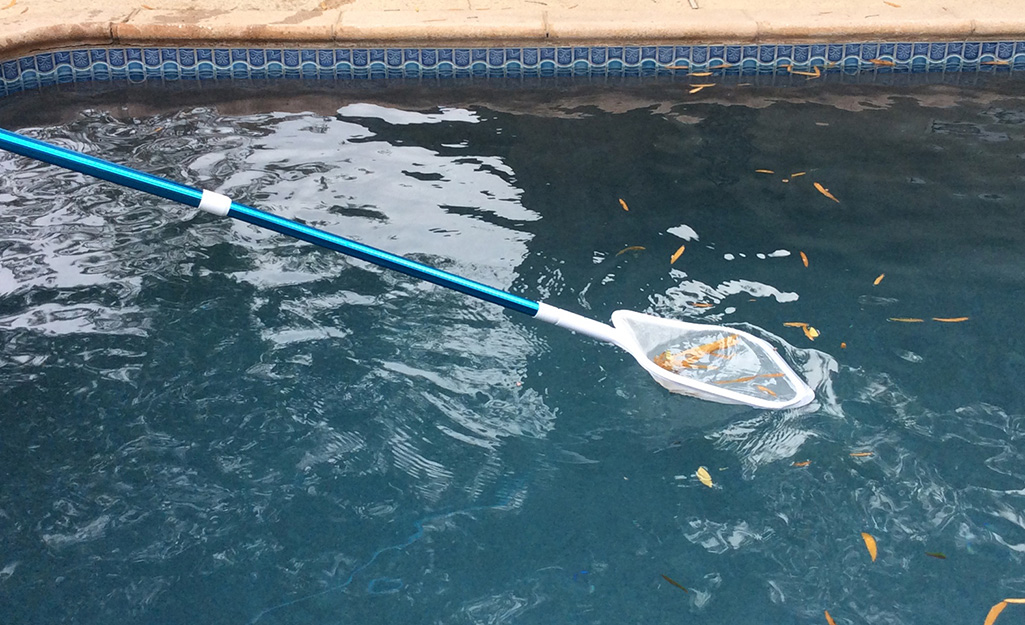 Person uses a skimmer to clean debris from the pool