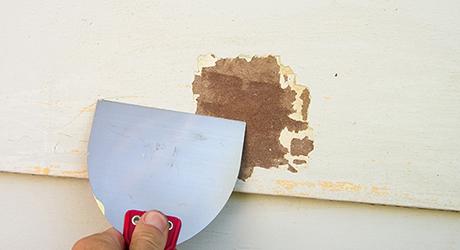 Bỏ cửa chớp đóng cửa sổ bão - Paint House Exterior