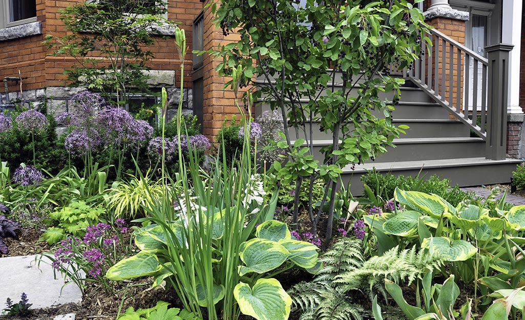 Gardening for the Senses and Seasons