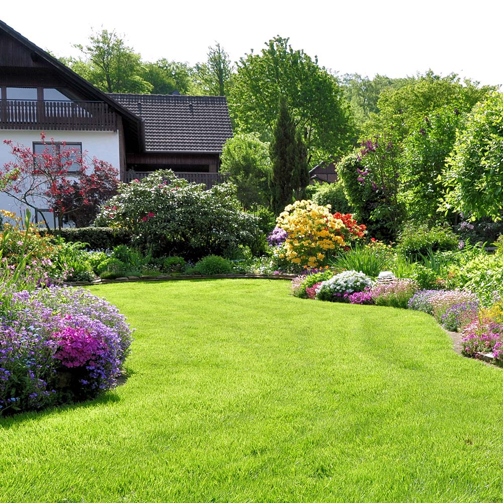 A green lawn bordered with flowers behind a house.