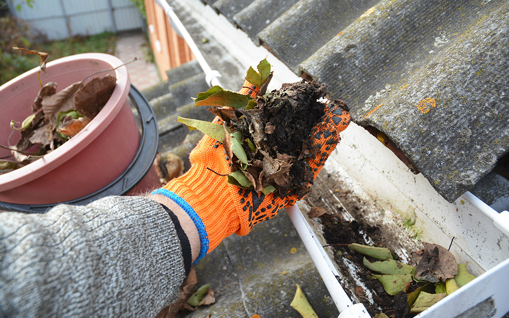 A person clears leaves from a gutter.