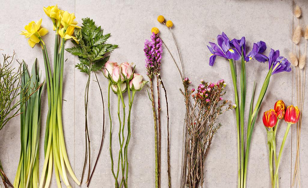 Nhiều hoa đặt trên bàn.