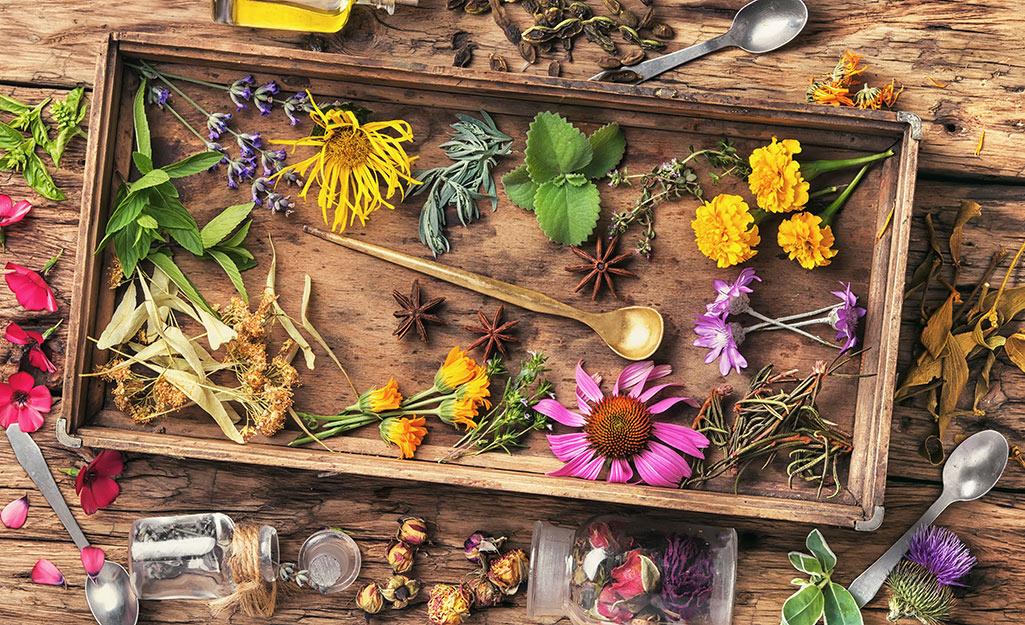 Hoa khô trên khay gỗ.