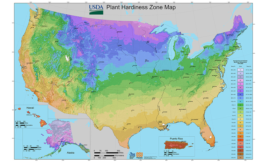 A USDA map of plant hardiness zones.