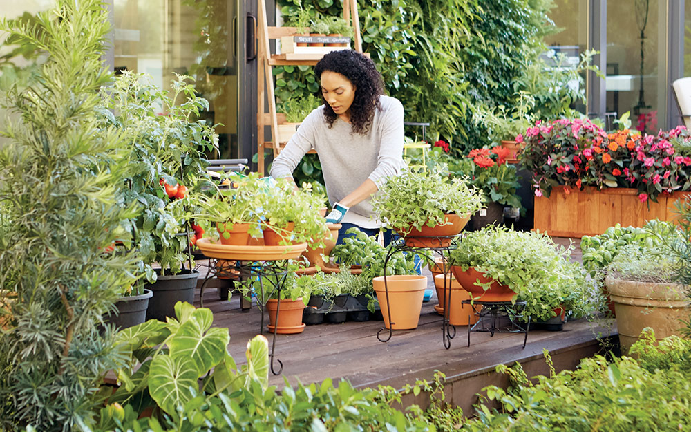 A woman tending to her container garden.