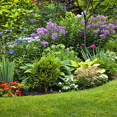 Colorful flower garden in spring